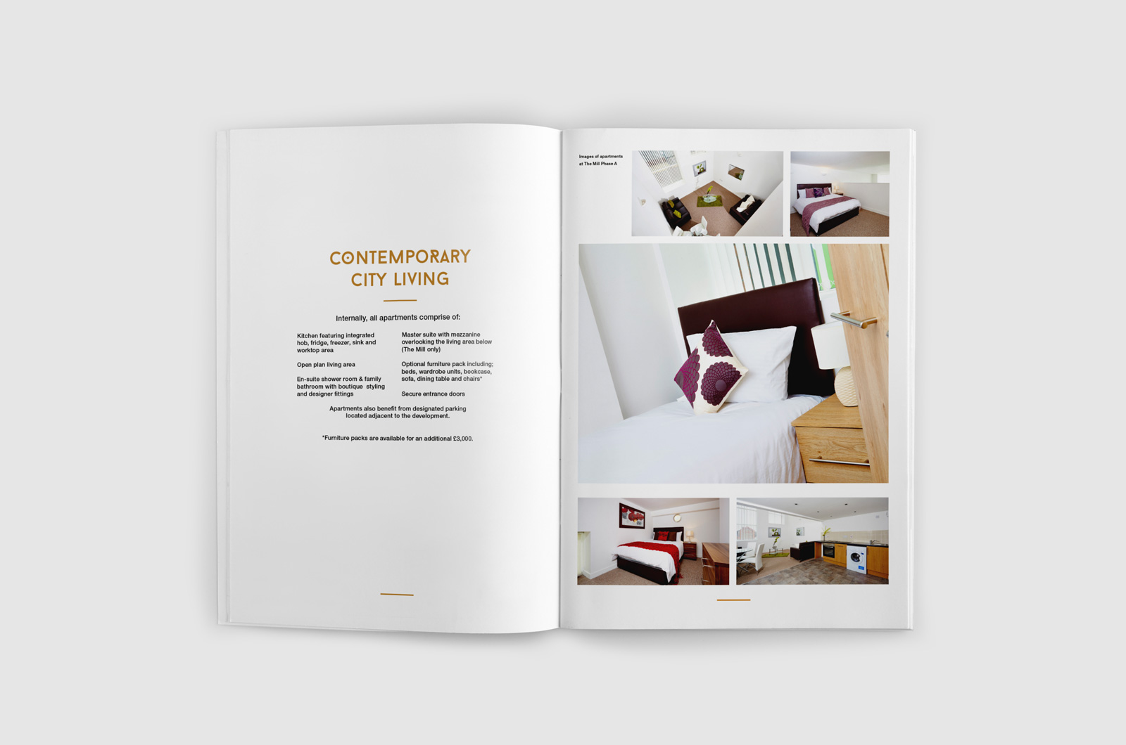 OPA Brochure 04