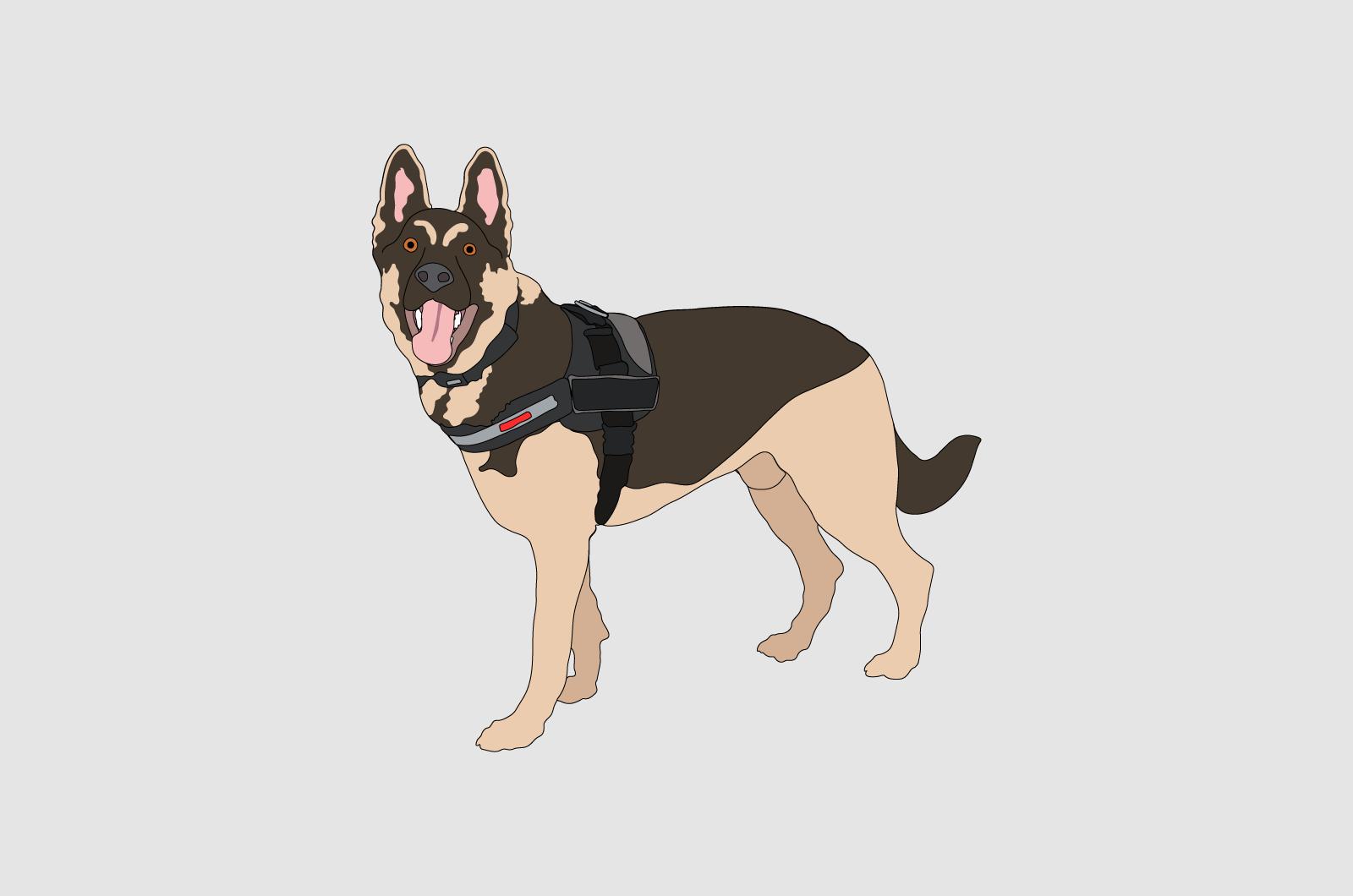 Fetch Jax Illustration Solo 01